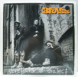 レコード画像:3RD BASS / Derelicts Of Dialect