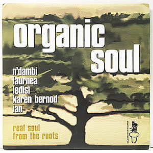 レコード画像:VARIOUS / Organic Soul - Real Soul From The Roots