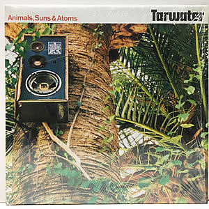レコード画像:TARWATER / Animals, Suns & Atoms