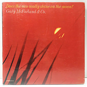 レコード画像:GARY McFARLAND / Does The Sun Really Shine On The Moon?