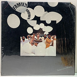 レコード画像:FAMILY BROWN / Imaginary World