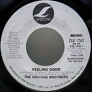 レコード画像:VOLTAGE BROTHERS / Feeling Good