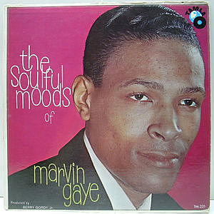 レコード画像:MARVIN GAYE / The Soulful Moods Of Marvin Gaye