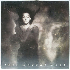 レコード画像:THIS MORTAL COIL / It'll End In Tears